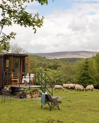 Nire Valley Glamping