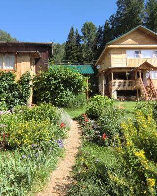 Sokol Guest House