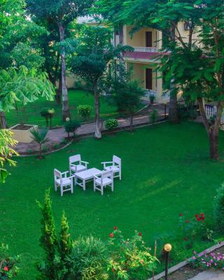Hotel Rainforest
