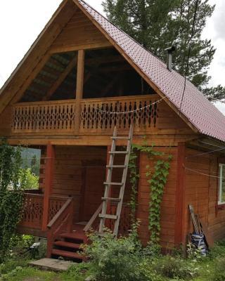 Guest House Kedroviy Dvorik