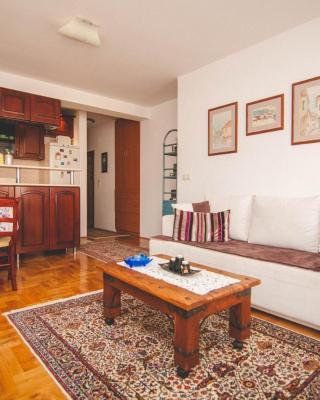 Apartment Mejtaš