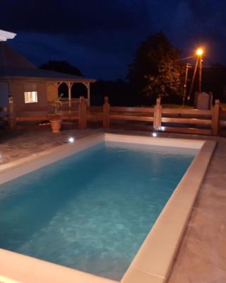 Villa piscine Ribourgeon
