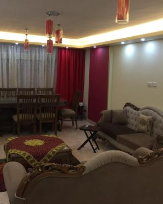 Apartment in Mohandesseen