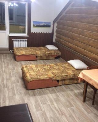 Apartments on Zvezdnaya 2