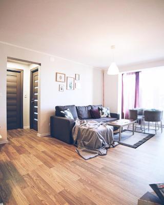 Superb apartment in Arad city center