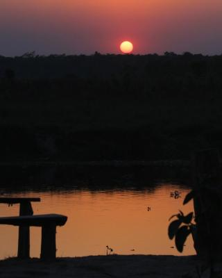 Jungle Sunset Camp