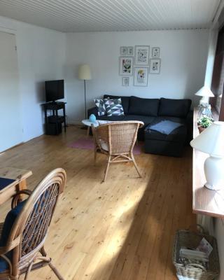 Emmas hus i Skagen