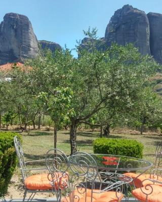 Olive Grove Rooms