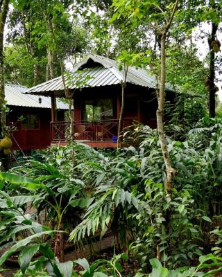 Monsoon Retreats