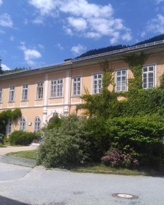 Apartments in Villa Crusca