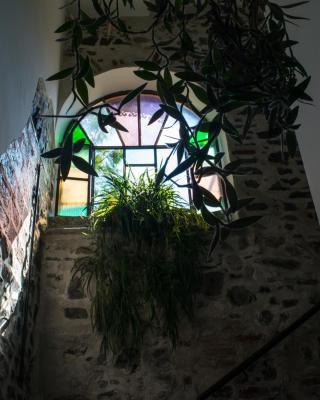 Casa Amata