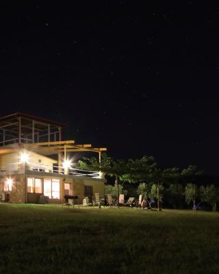 Zoina's House
