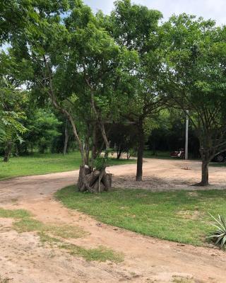 Captain's Bird Safari Lodge