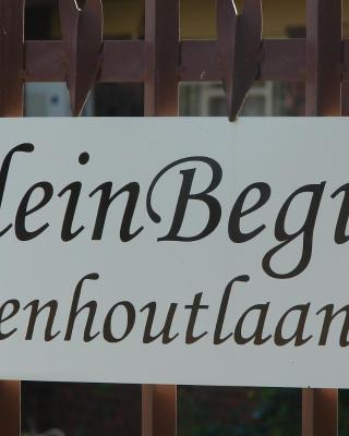 Kleinbegin