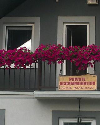 Private accommodation Lidija Rakočević
