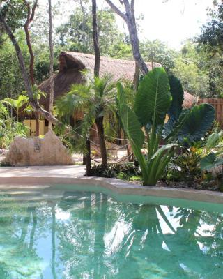 Casa Selva Orquideas