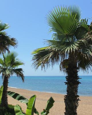 Ionion Beach Apartment Hotel & Spa