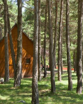 Camping Fontfreda (Espanha Castellar del Riu) - Booking.com