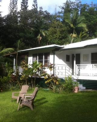 The Jungle Farmhouse