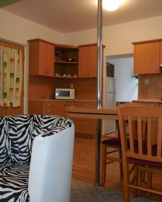 Apartment Blehovi