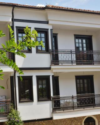 Apartment Villa Dudanov