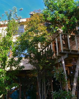 La Casa Del Árbol De Chiloé