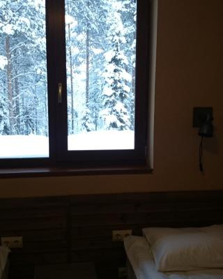 Motel Zeleniy Bor
