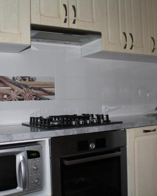 Apartment On Kirova 137