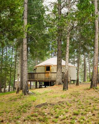 Yosemite Lakes Hillside Yurt 13