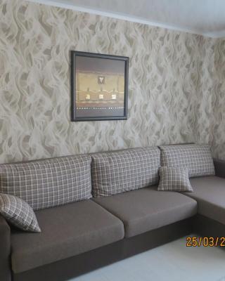 Apartment on Kosmonavtov Boulevard 96