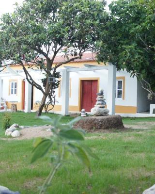 Olive3 Ericeira Hostel