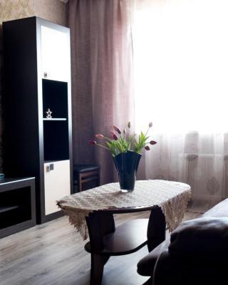 Apartment On Prospekt Kosmonavtov