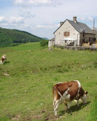 Chez Marraine