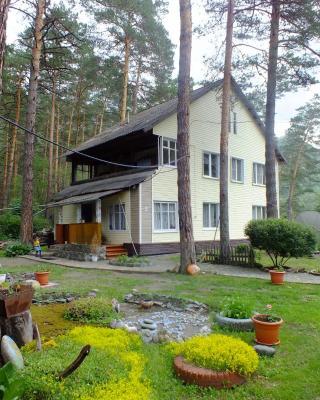 Guesthouse V Sosnovom Boru
