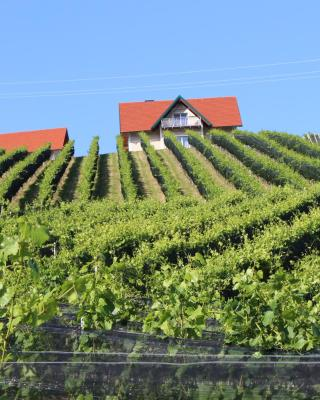 Weingartenhaus