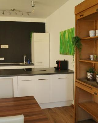 Loft Style 3 Room Apartment + terrace