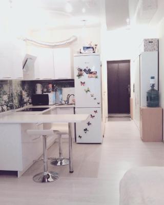 Apartment on Patsaeva 20