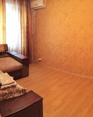 Apartment on Melnykova street
