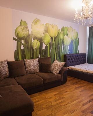 Apartment on Kurchatova 76