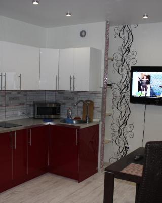 Apartment on Zheleznodorzhnaya st.