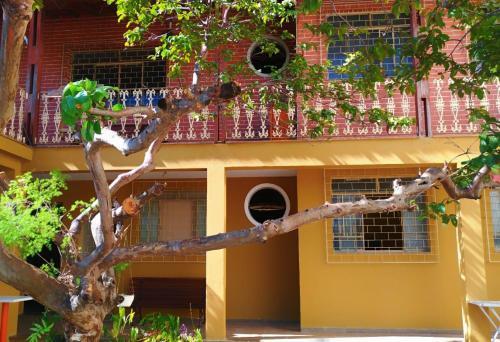 Hostel 238