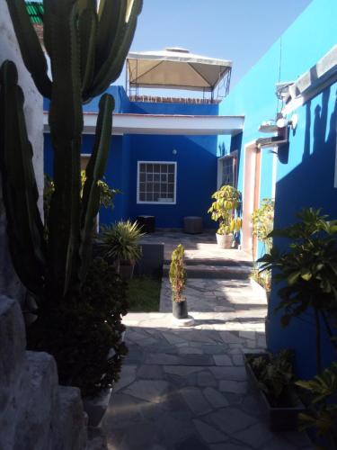 Bubamara San Lazaro