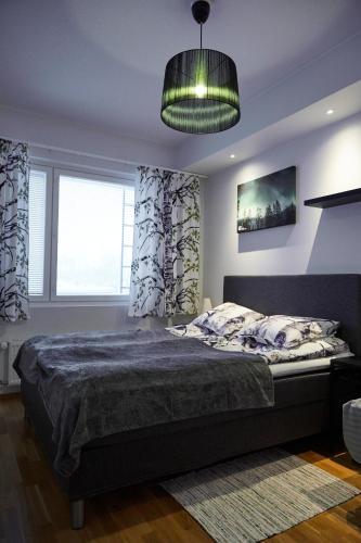 Arctic Oasis Apartments