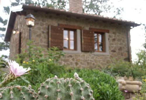 Romantic Private Cottage close to Florence