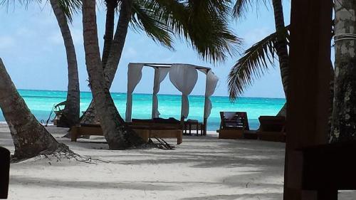 Cadaques Caribe Pez 103