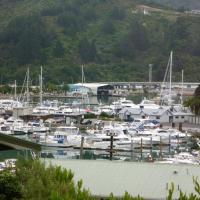 Picture Perfect in Picton