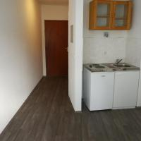 Business/holiday Apartment Mainz Downtown