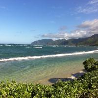 Yellow BeachFront Paradise