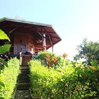 Light Eco-House