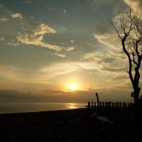 Bali Surfhouses